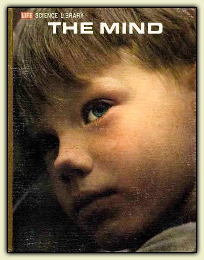 the-mind.jpg