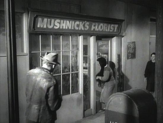mushnicks.jpg