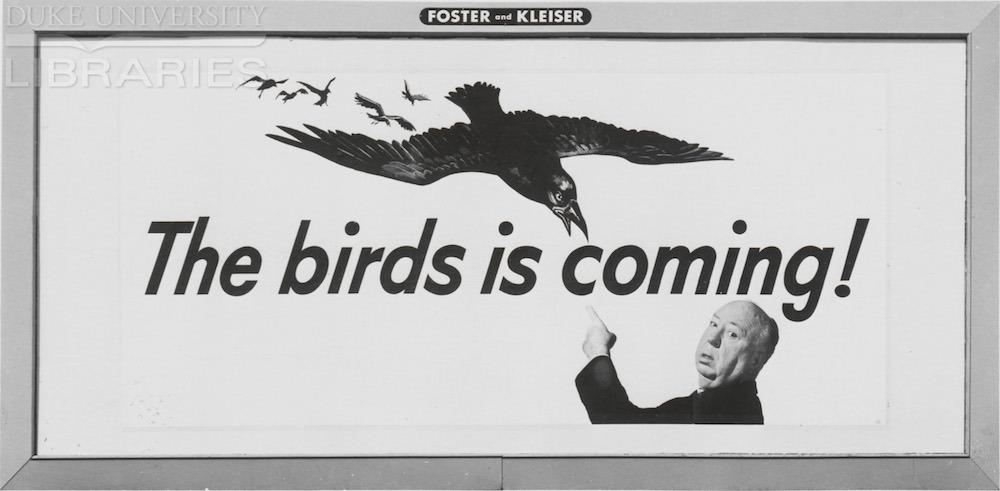 birdsbillboard.jpg